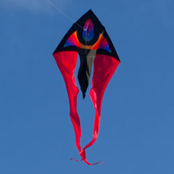 Colours In Motion F Tail Delta Kite XM