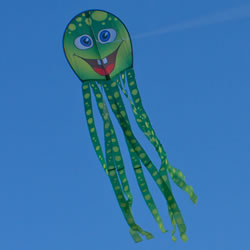 Friendly Monster Kites